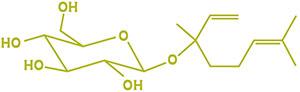 Lynalyl glycoside molecule